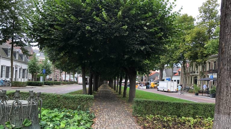 Oisterwijk is niet het mooiste dorp van Nederland: 'Maar wel de Parel van  Brabant' - Omroep Brabant