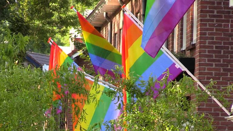 De regenboogvlaggen in de Leijparkweg. (foto: Omroep Brabant)