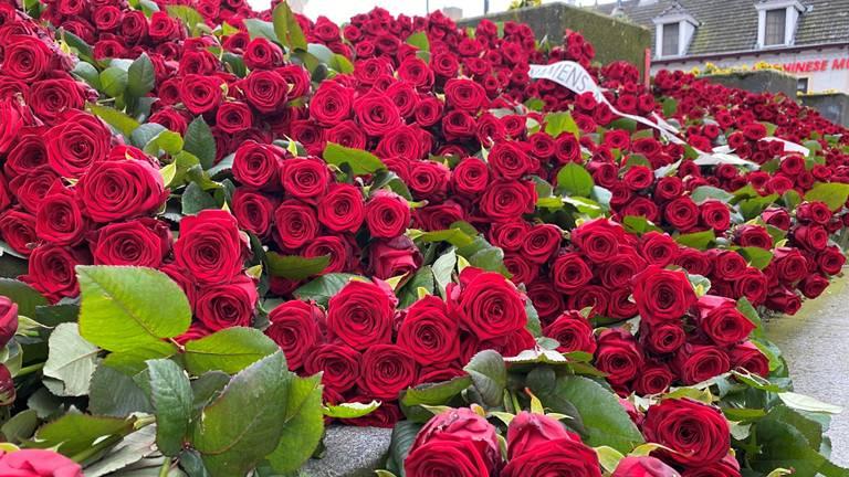Bloemen in Erp voor coronaslachtoffers (foto: Jan Peels).