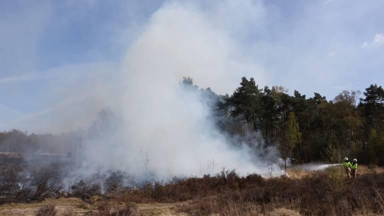 Brand op de Vughtse Heide (foto: Bart Meester/SQ Vision)