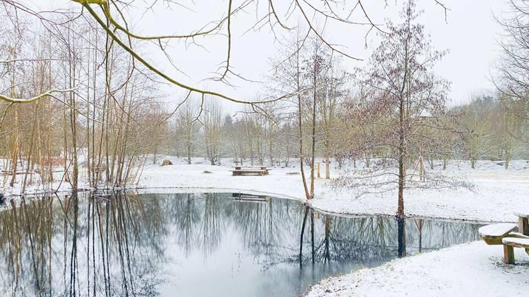 De eerste sneeuw in Oosteind (foto: Danny Wolfs).