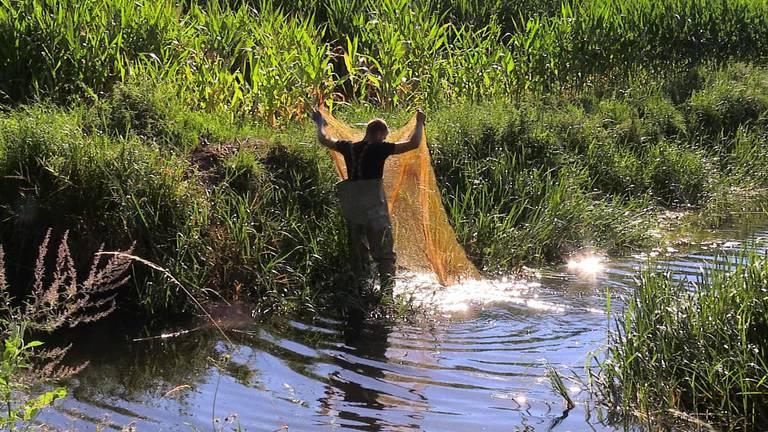 Netten moeten ervoor zorgen dat de vissen niet in de zijsloten zwemmen (foto: Tessel Linders).