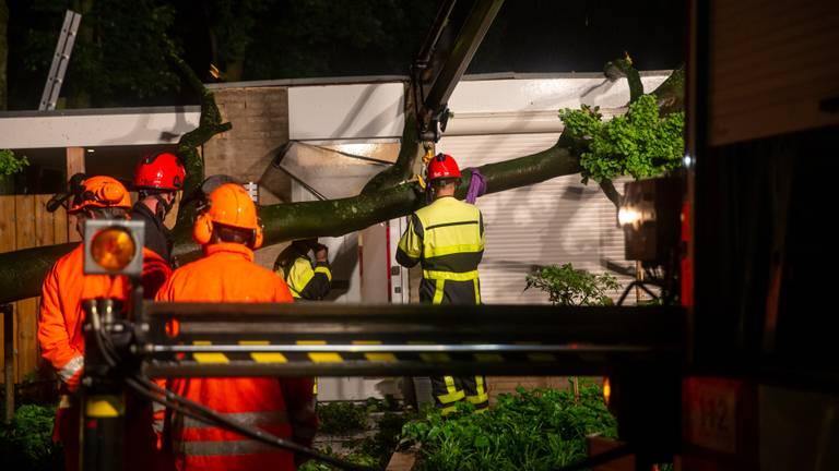 In Ossendrecht kwam door het noodweer een boom op een huis terecht (foto: Christian Traets).