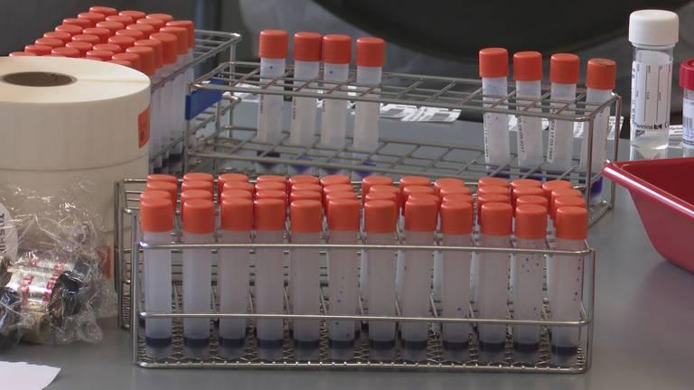 De testbuisjes om het coronavirus te achterhalen (foto: Erik Peeters).
