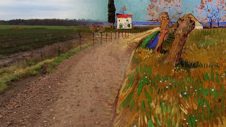 Zo had het er hier in de gemeente Zundert ongeveer uit gezien als Van Gogh het had geschilderd.