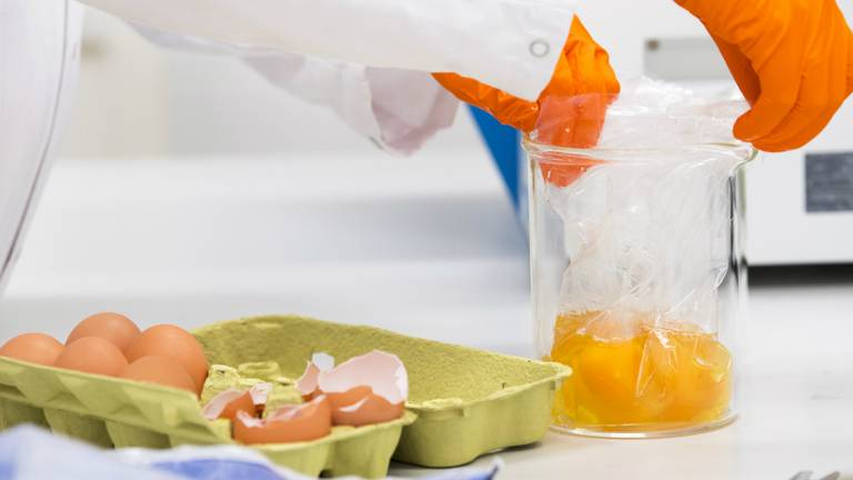Onderzoek naar de besmette eieren (foto: ANP)