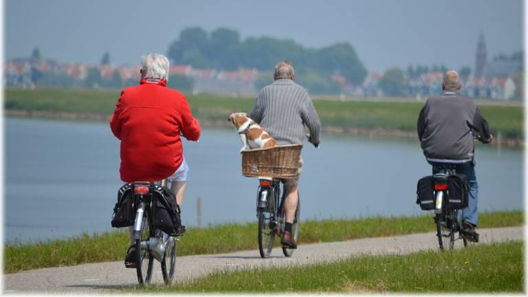 De e-bike is gevaarlijker dan gedacht (foto: Annemie Jonkergouw-Jenniskens)
