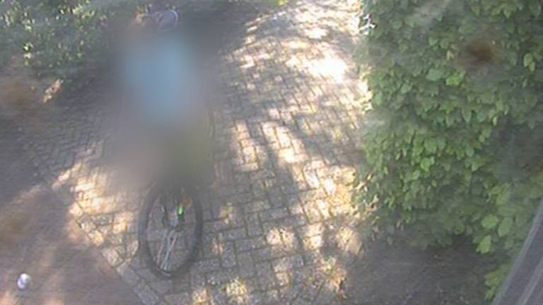 Tientallen Brabantse camerasystemen gehackt, live te zien hoe mensen thuiskomen. (Omroep Brabant)