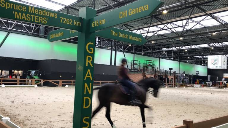 Paardensport in de Brabanthallen.