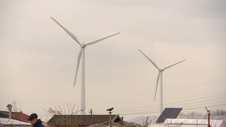 De windmolens op Haven Acht moeten flink hoger worden.