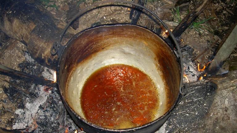 Ayahuasca komt uit het Amazonegebied (bron: Wikimedia).