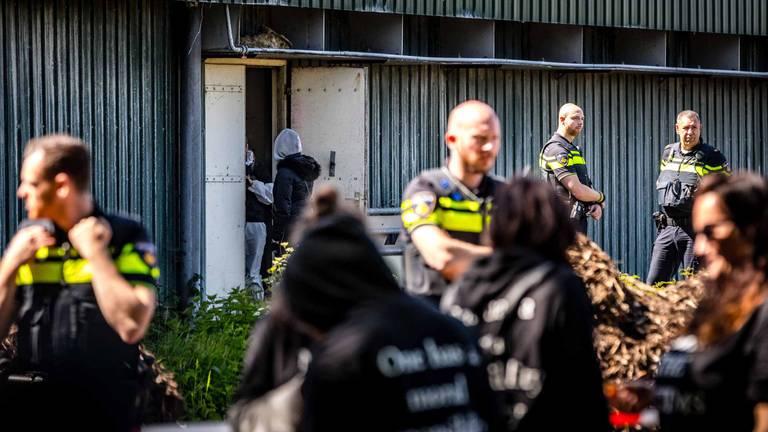 De varkensstal werd bezet door dierenactivisten (foto: Rob Engelaar).