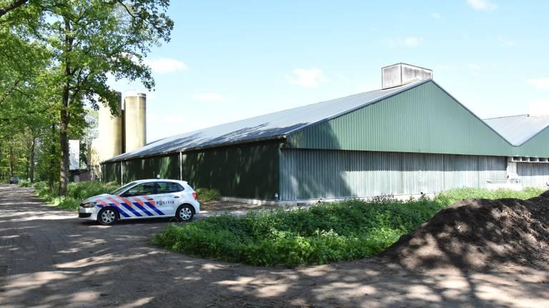 De varkenshouderij van de familie Van Sleuwen in Boxtel. (Foto: GinoPress B.V).