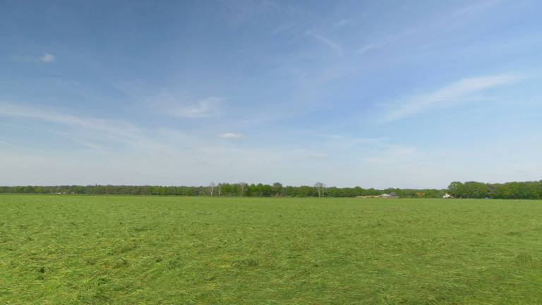 Brabant verandert in een 'groene woestijn'.