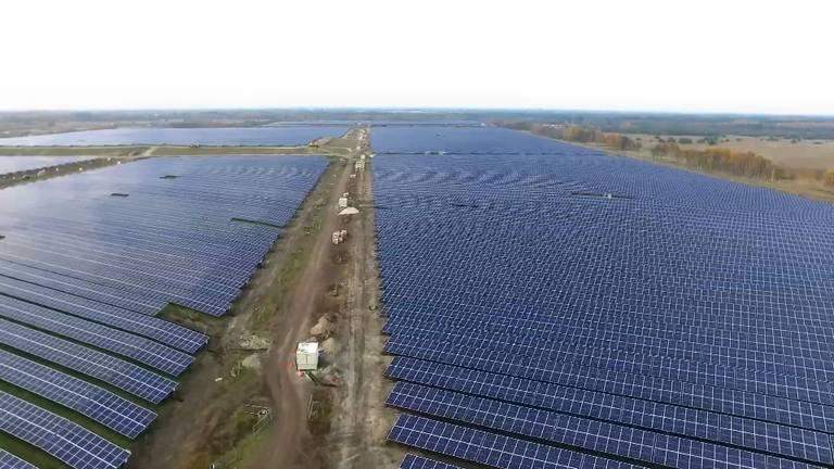 Het zonnepark in Budel-Dorplein (Beeld: Solarcentury)