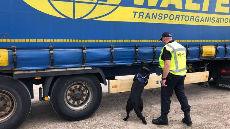 Een politiespeurhond bij een vrachtwagen (Foto: René van Hoof)