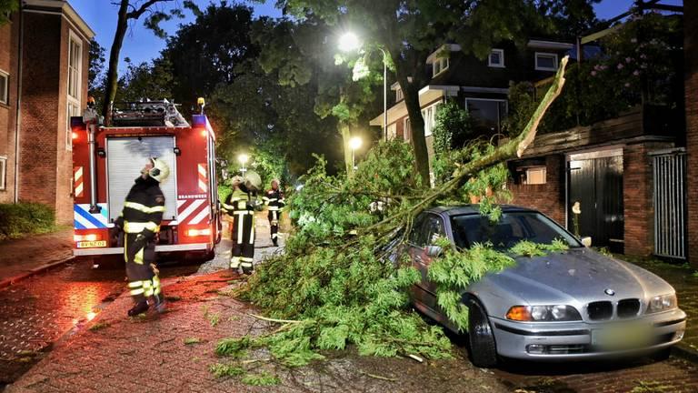 In de Armhoefstraat in Tilburg viel een dikke tak op een BMW. (Foto: Toby de Kort)