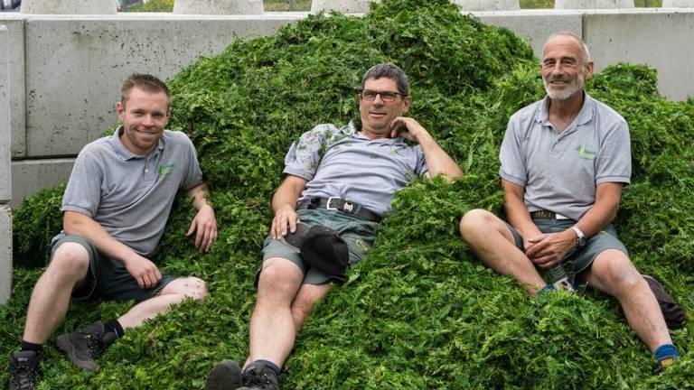Werner Toonen (l) met zijn collega's van de Taxus Taxi (Foto: Taxus Taxi).