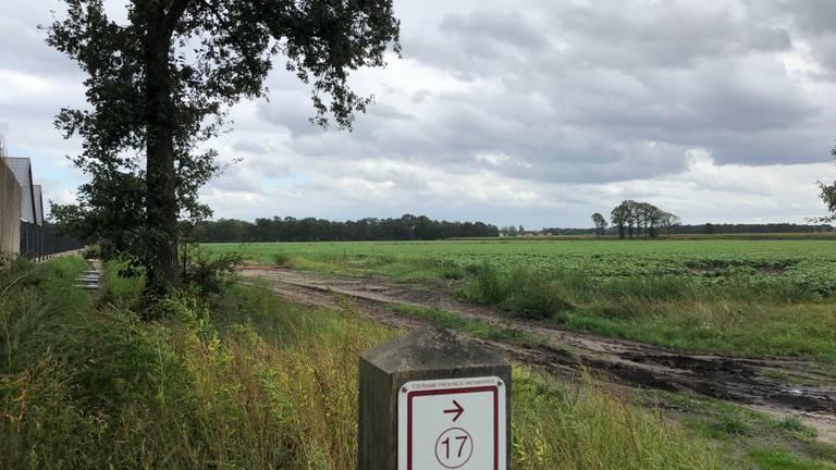 Hier, net over de Belgisch-Nederlandse grens wil Tanja van der Walle haar kalverhouderij beginnen. Links zijn nog net de gebouwen te zien van het door haar ouders opgerichte bedrijf.
