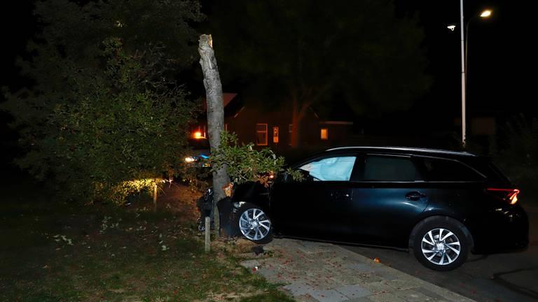 De bestuurder botste op een boom toen hij een spin wilde verwijderen. (Foto: SK Media)