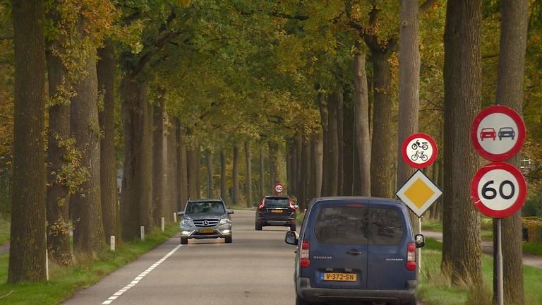 De N395 (foto: Omroep Brabant).