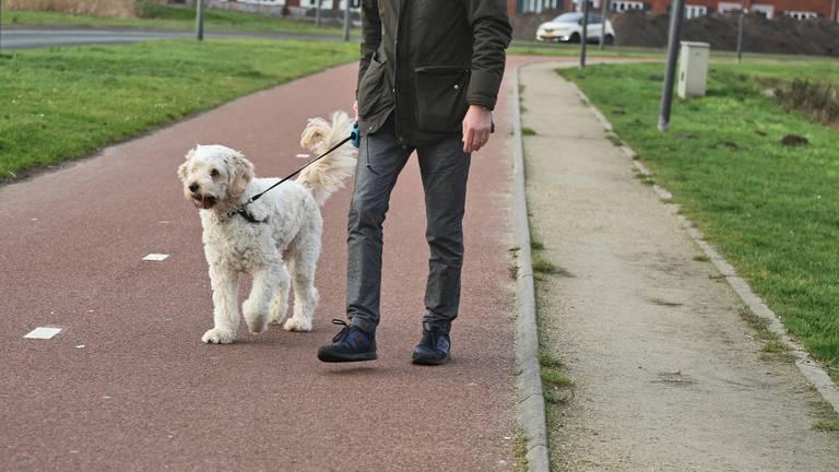 De mans overvallen terwjil hij zijn hond uitliet (archieffoto: Karin Kamp).