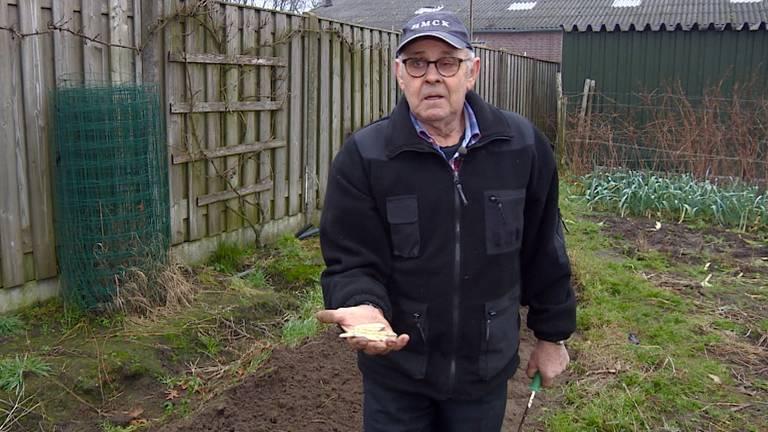 Piet laat trots de eerste asperges zien.
