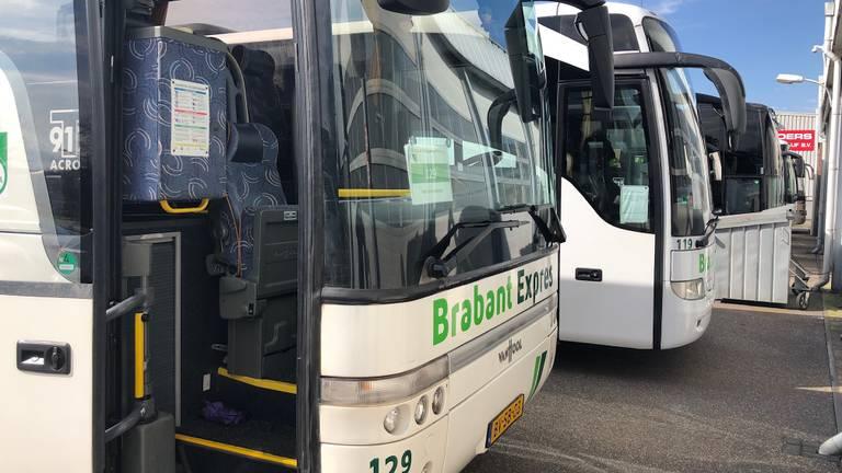 De hele vloot van het busbedrijf in Zevenbergen staat stil (Foto: Erik Peeters)