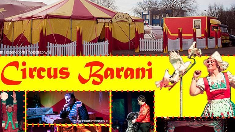 Voorlopig geen voorstellingen voor Circus Barani.