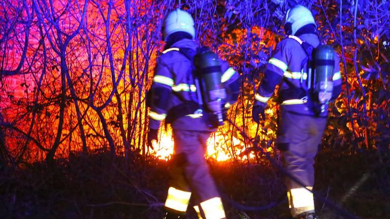 De brandweer kon de eerste brandstichting van de pyromaan snel blussen (foto: Gabor Heeres/SQ Vision)