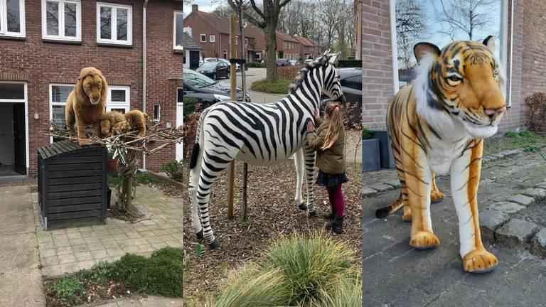 Op safari in Oosterhout.