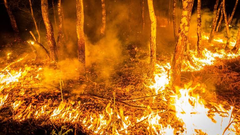 Grote natuurbrand in Deurnese Peel (foto: Sem van Rijssel/SQ Vision Mediaproducties)