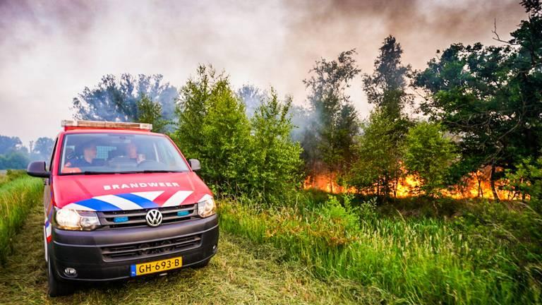 Foto: Sem van Rijssel/SQ Vision