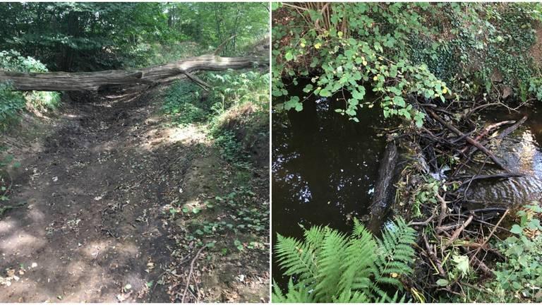 Twee jaar geleden (links) stond het er nog kurkdroog, nu niet meer (foto's: Mari de Bijl).