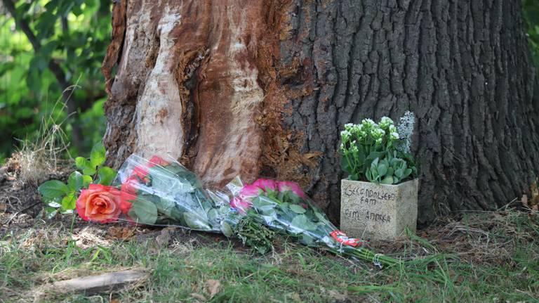 Bij de plek van het ongeluk zijn bloemen neergelegd. (Foto: Collin Beijk)