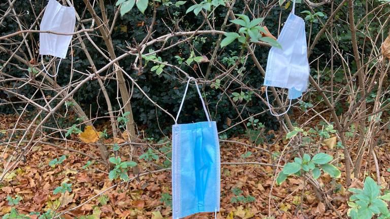 Voorbijgangers hangen hun mondkapje massaal in de boom. (Foto:Arianne de Jong)