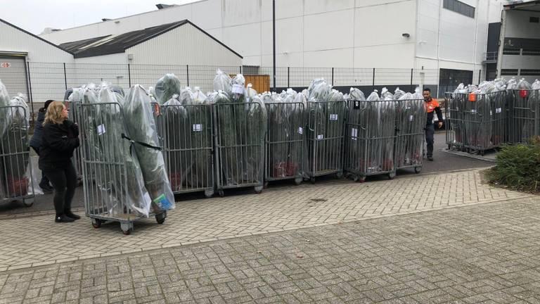 Medewerkers van Odenneboom.nl zetten de bestellingen klaar (Foto: archief O Denneboom)