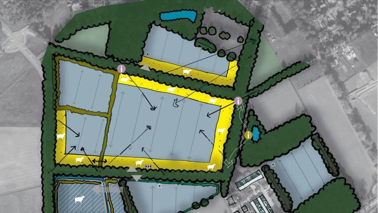 Impressie van het nieuwe zonnepark (Afbeelding: Solarcentury)