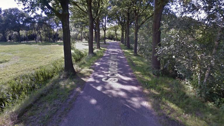 De golden retriever werd aangevallen op de Schoutse Vennen in Nuenen (beeld: Google Maps).