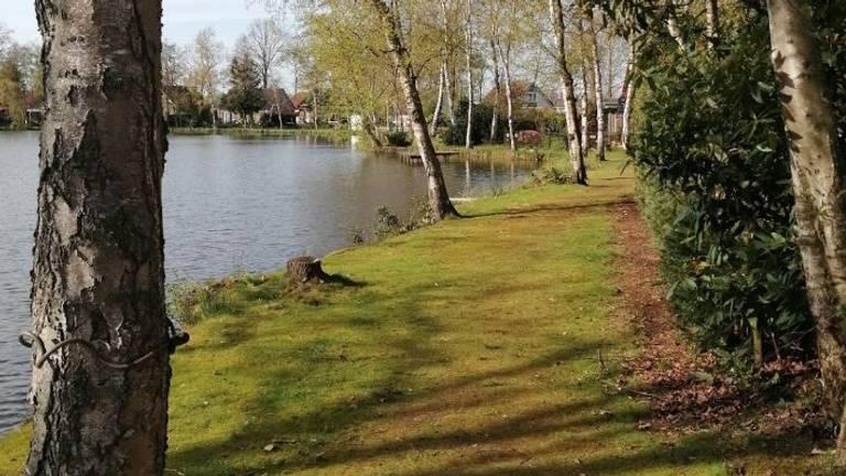 Het lichaampje werd gevonden in het park in Wernhout (foto: Google Streetview).