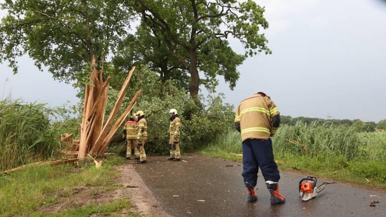 In Boxtel werd een boom geraakt. Foto: SQ Vision/Sander van Gils.