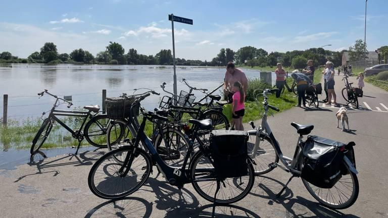 Het hoge Maaswater bij Sambeek trekt veel bekijks van omwonenden. (Foto:Alice van der Plas)