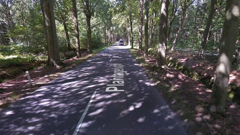 De Plantagebaan in Wouwse Plantage (beeld: Google Streetview).