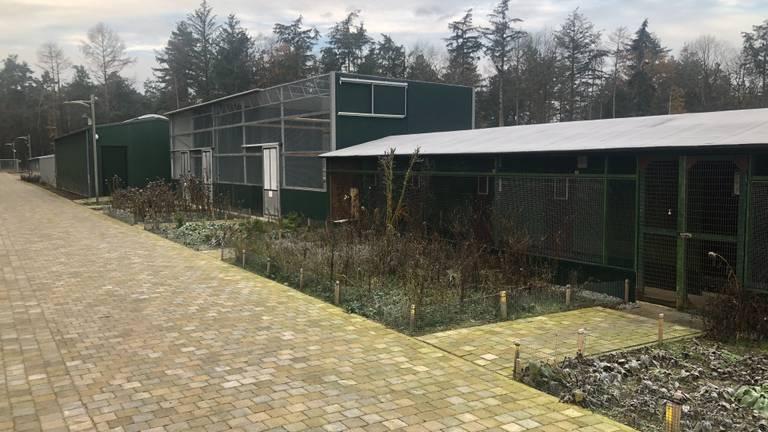De nieuwe onderkomens bij het vogelasiel in Someren (foto: Omroep Brabant).