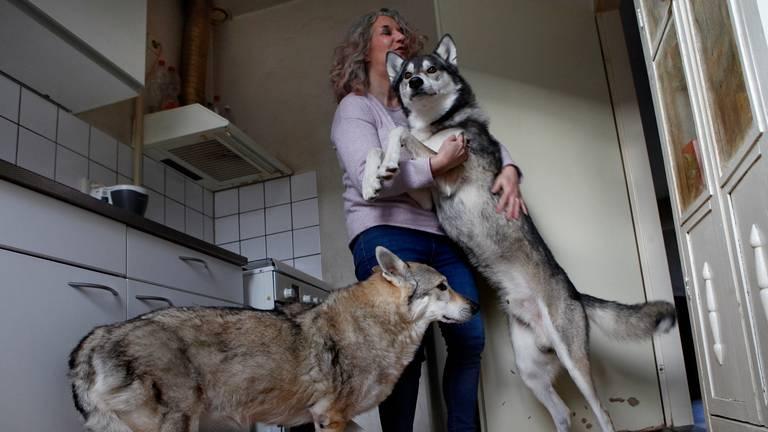 Ghost en Bachata begroeten enthousiast hun baasje Wilma Pabst uit Roosendaal. (Foto:Marielle van Uitert)