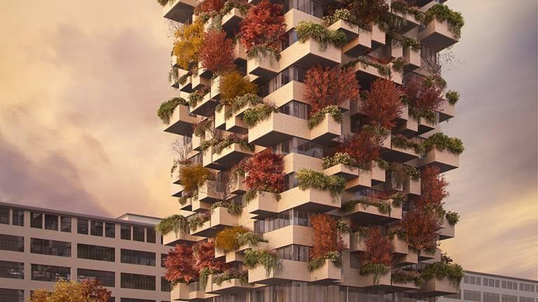 In de herfst is de kleur van het verticale bos in Eindhoven rood.
