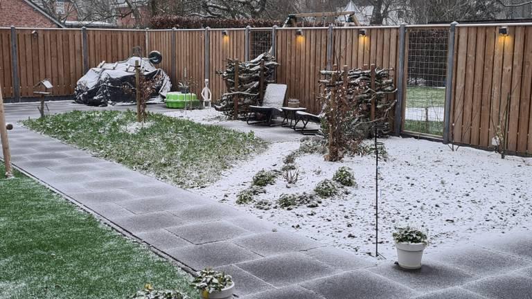Sneeuw in Lage Mierde (foto: Eelco Scherpenisse).