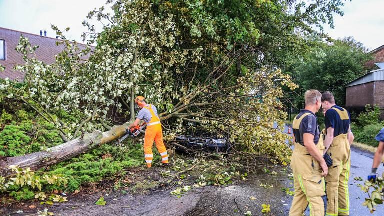 Boom komt op auto terecht in Beek en Donk (foto: Harrie Grijseels/SQ Vision)