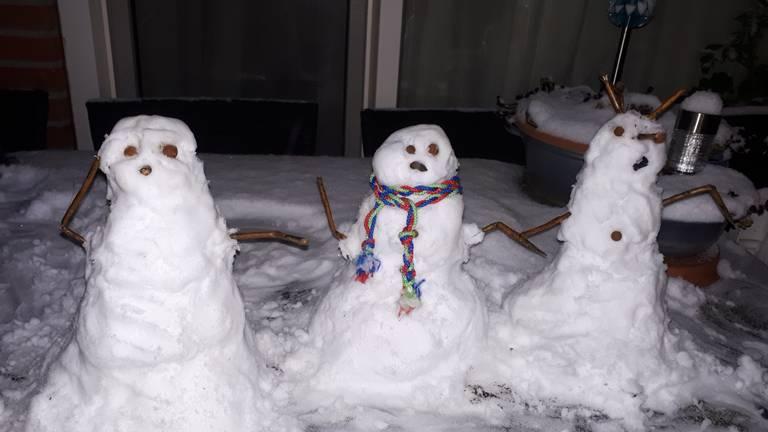 Genoeg sneeuw voor drie op een rij (foto: Wendy Meisner).