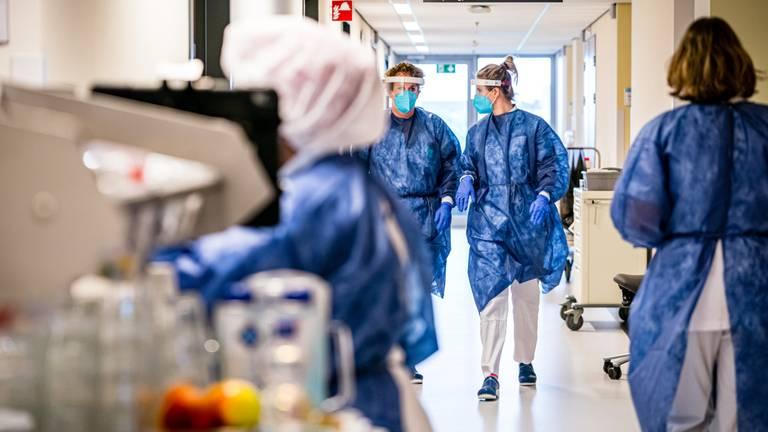 De cohortafdeling van het Catharina Ziekenhuis in Eindhoven (foto: ANP 2020/Rob Engelaar).